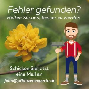 Helfen Sie bei der Pflanzenbestimmung