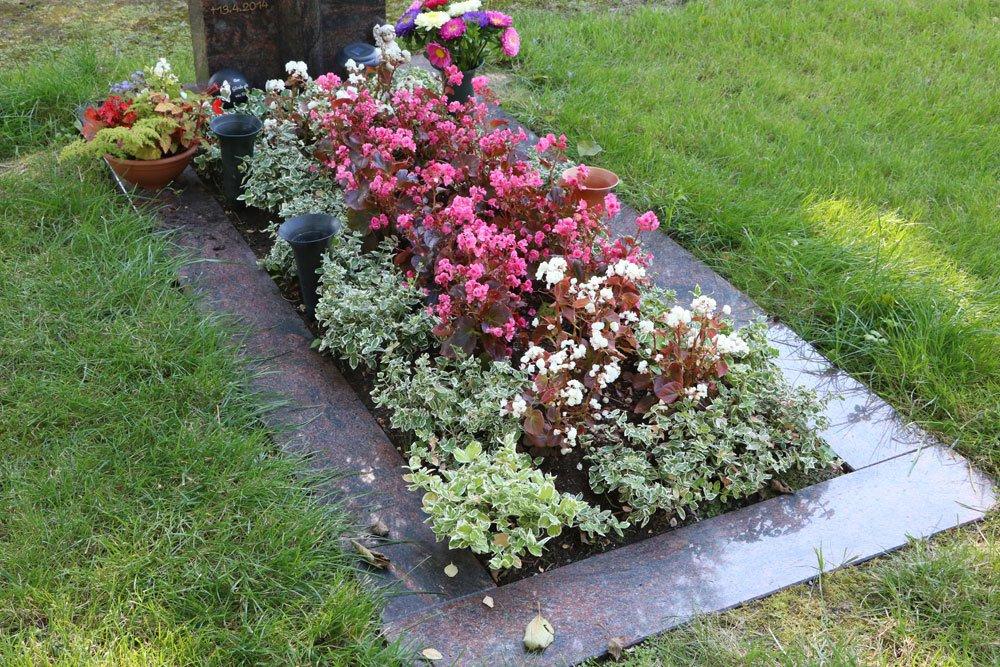 Fabelhaft Grabbepflanzung im Sommer - Beispiele für alle Standorte und Grab #WT_08