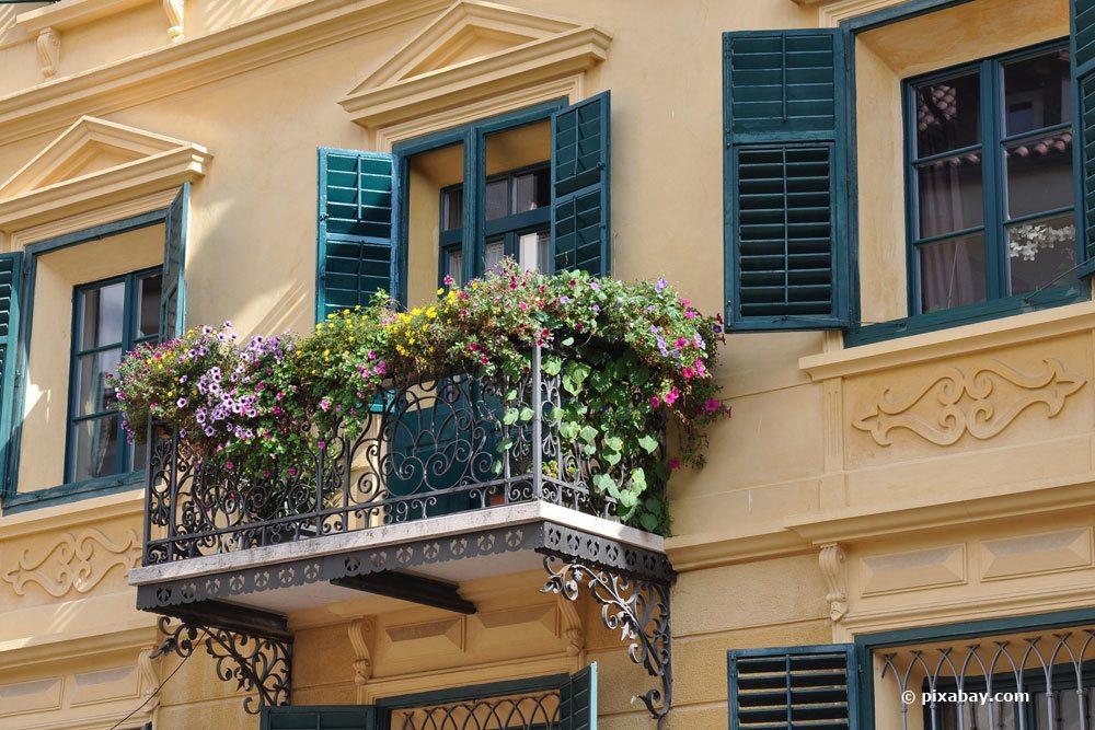 Außergewöhnlich Pflegeleichte Balkonpflanzen: 11 schöne und robuste Balkonblumen &AO_06