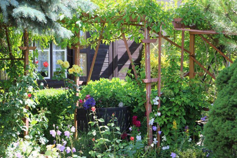 Blühende Garten Sträucher zu jeder Jahreszeit