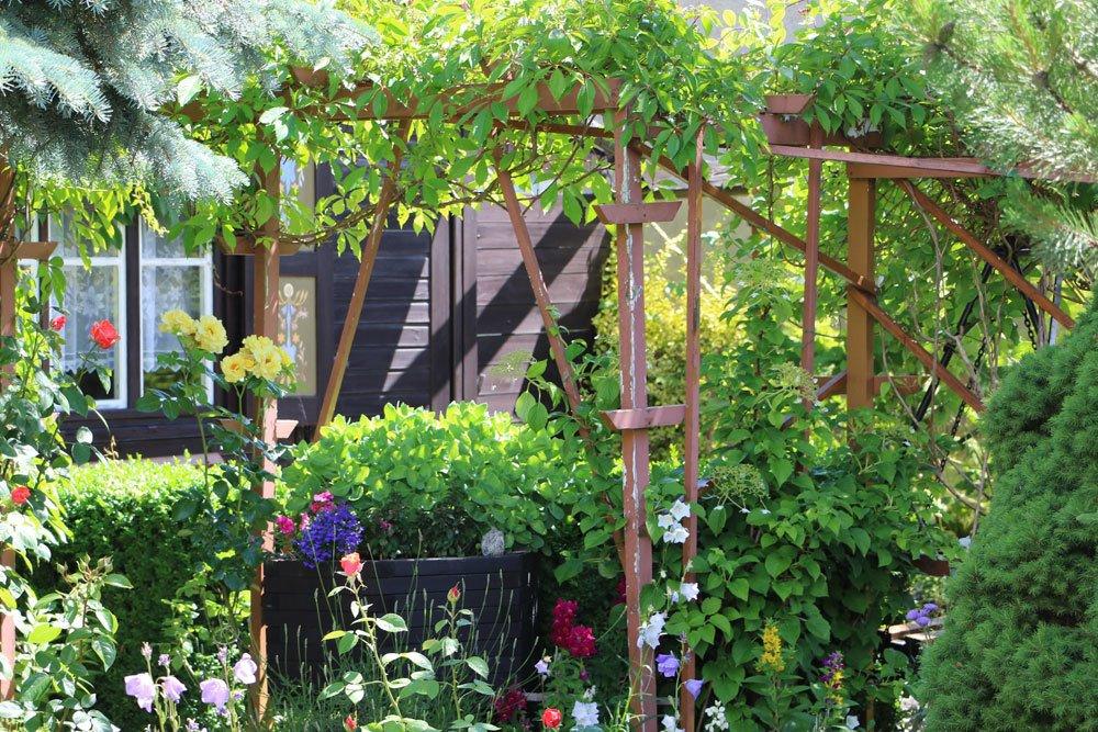 heimischer Garten