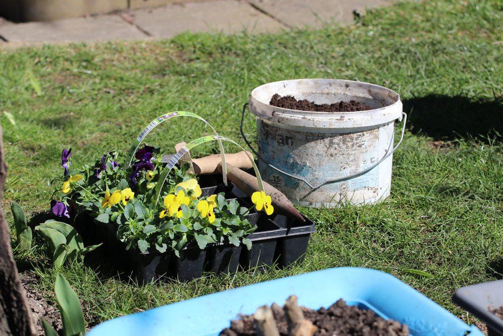 Kann man blumen mit chlorwasser gie en schadet poolwasser for Garten pool chlortabletten