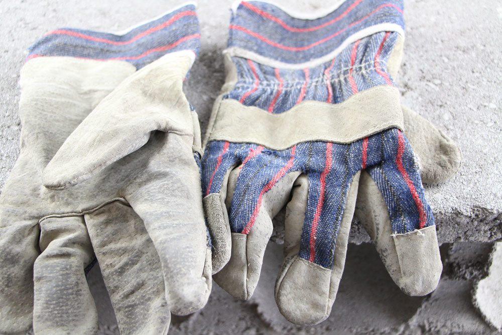 beim Rosenschnitt Handschuhe zum Schutz tragen