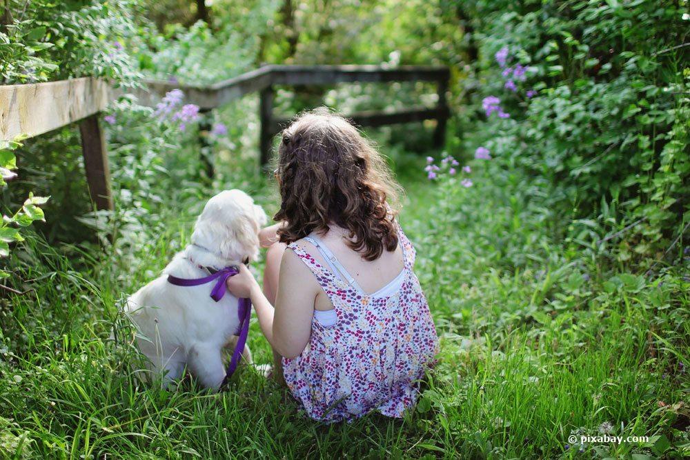 Blaukorn ist gefährlich für Kinder und Haustiere