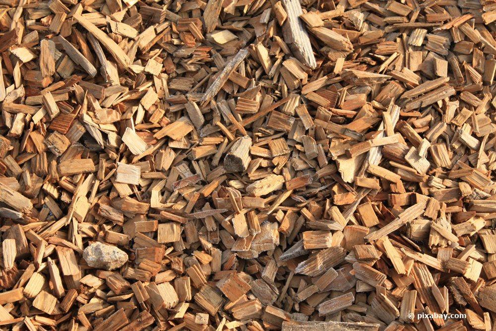 Holz-Fasern als Orchideen Substrat