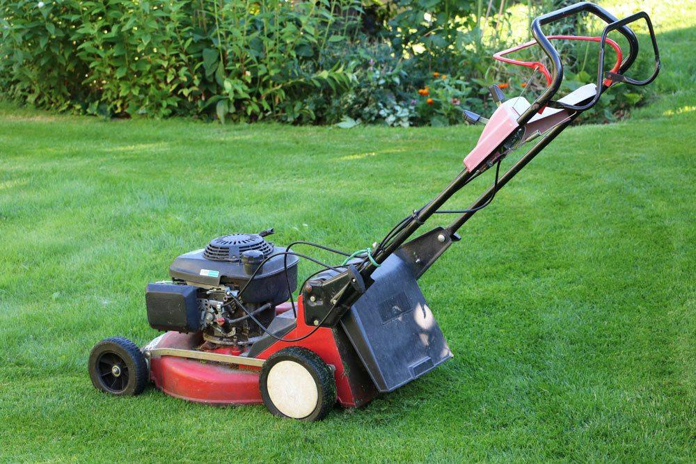 frischen Rasen mit dem Rasenmäher mähen