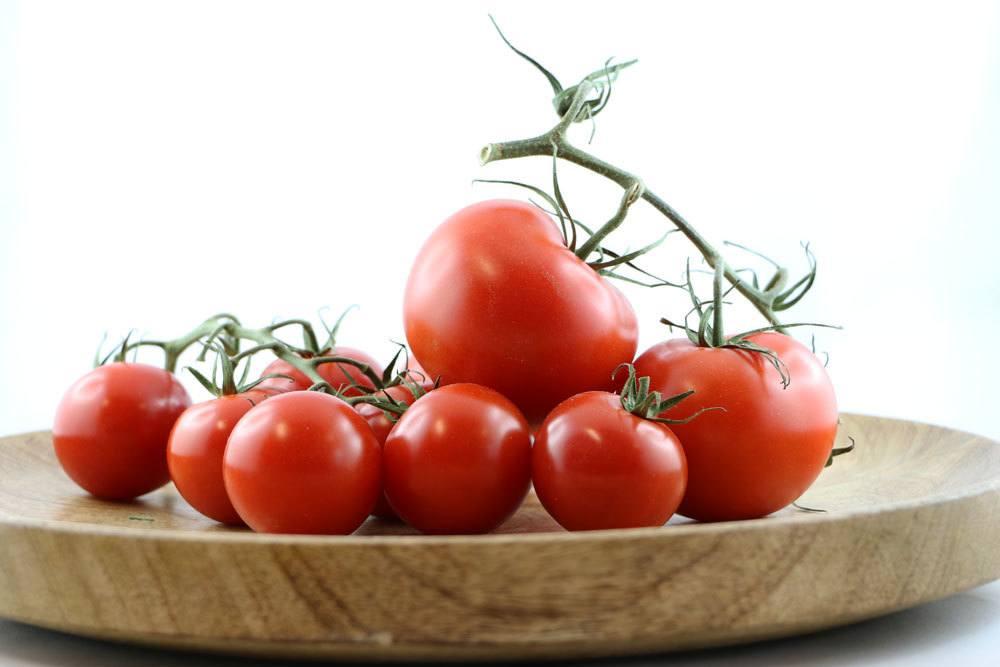 Tomaten sind auch als Snack sehr begehrt