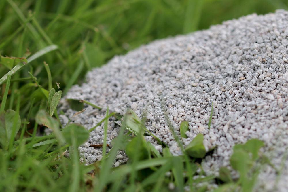 Kalkung des Rasens im Vorfeld