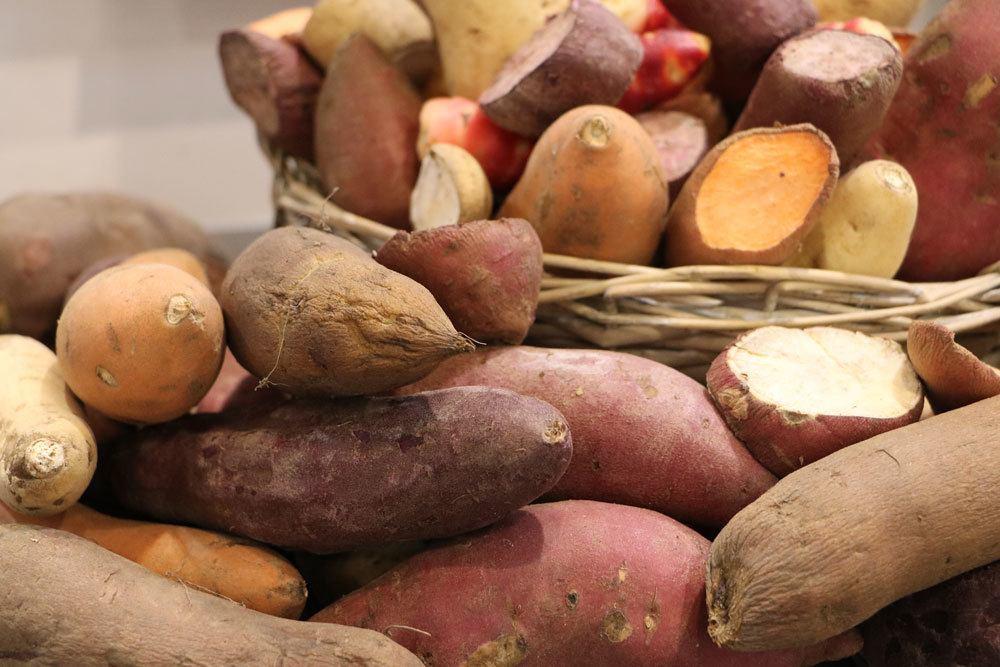 Kartoffelsorten, die besten Sorten im Überblick