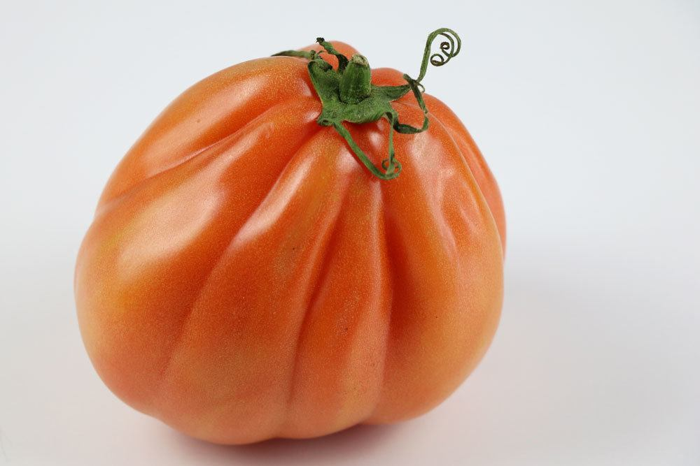 Tomatensorten, Ochsenherz-Tomate