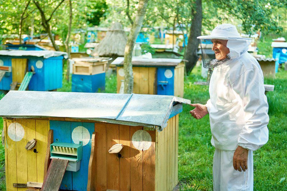 Bienenschutzkleidung