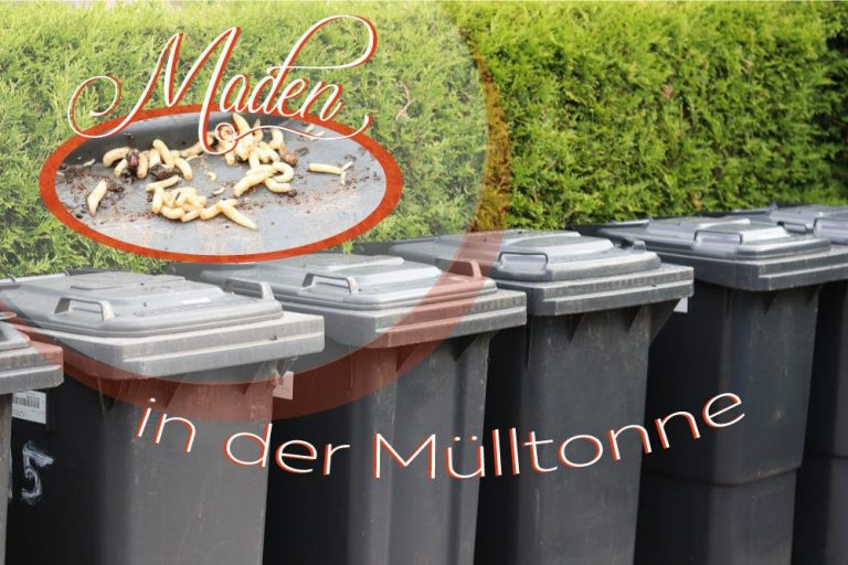 Maden in der Mülltonne
