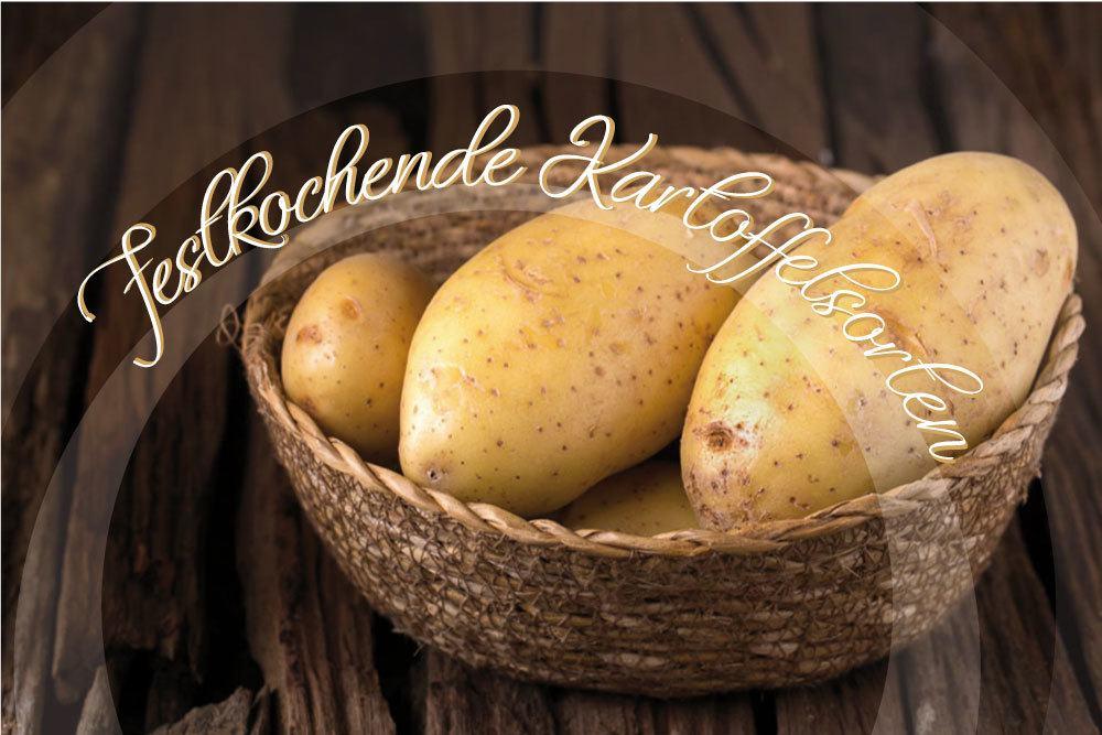 festkochende Kartoffelsorten