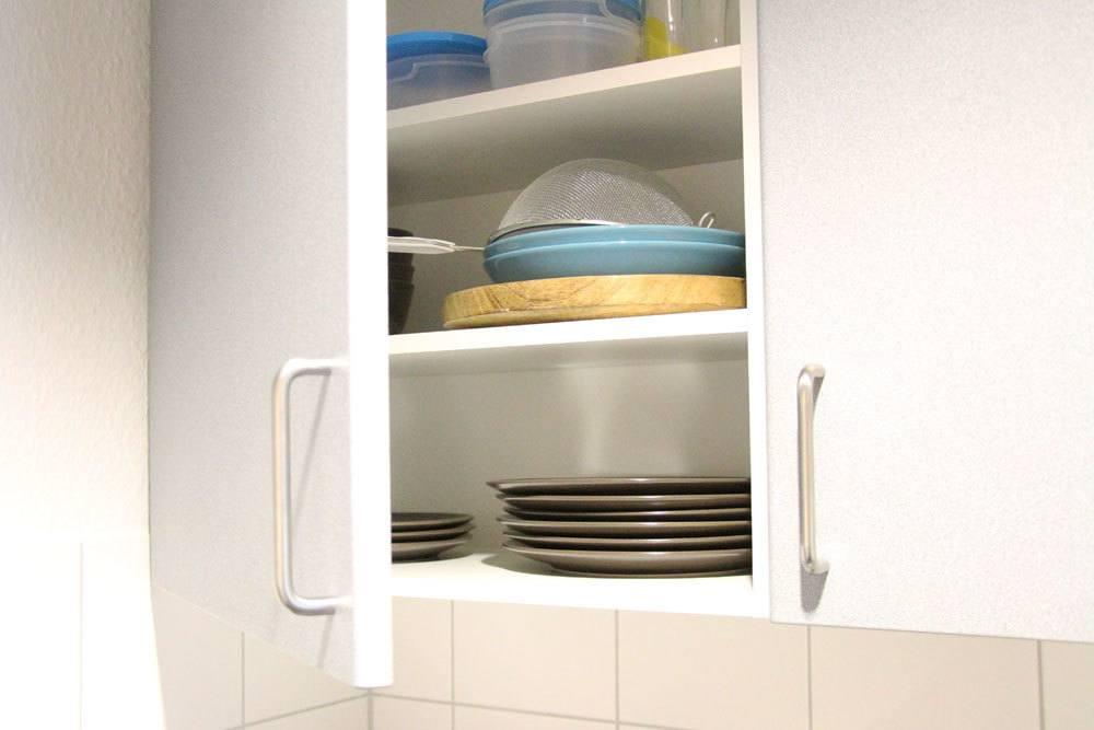 Schädlinge können sich auch in Küchenschränken befinden