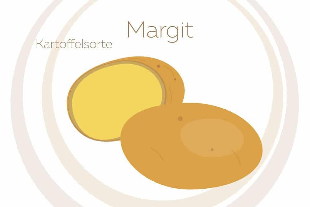 Kartoffelsorte Margit