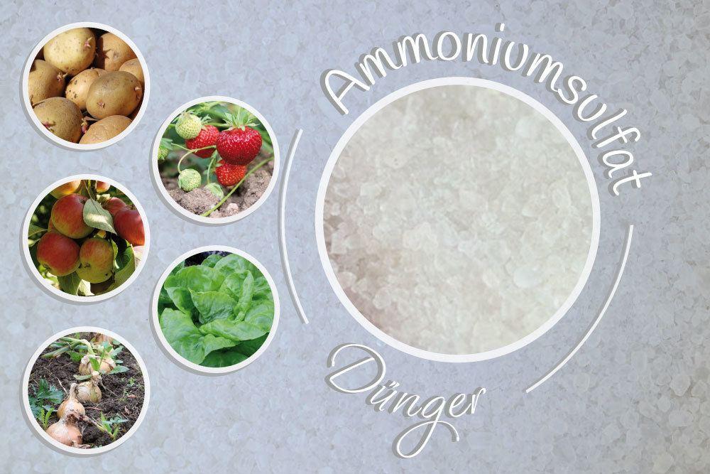 Ammoniumsulfat-Dünger