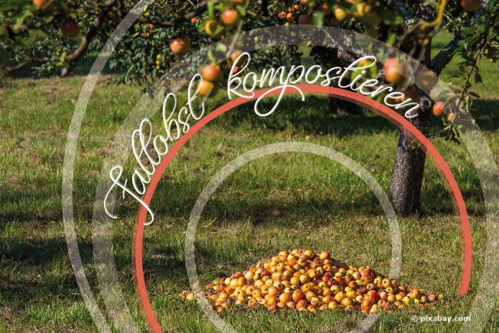 Fallobst kompostieren