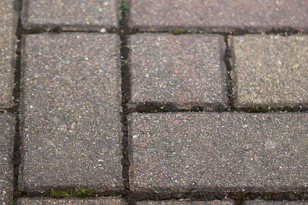 Gehweg-Pflastersteine ohne Moosbewuchs
