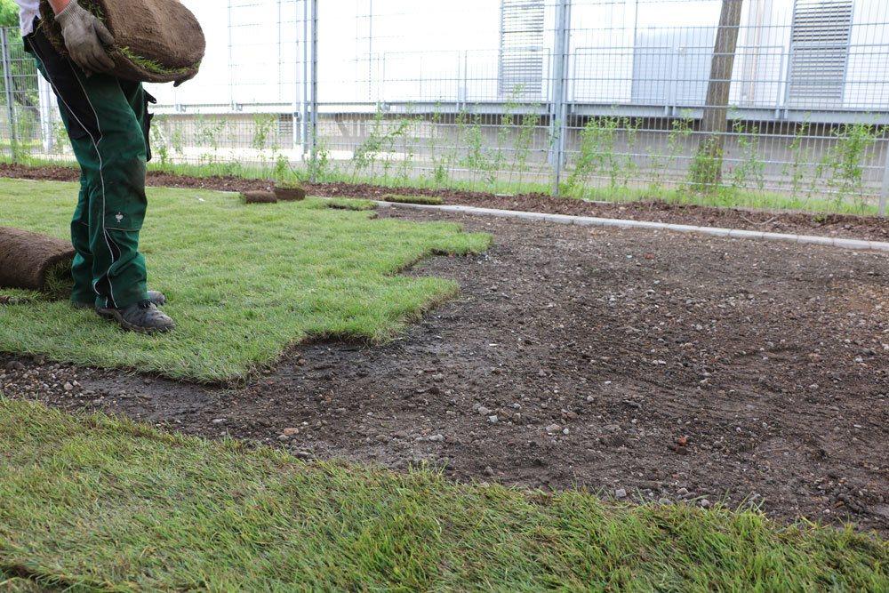 Bodenvorbereitung und Rollrasenverlegung