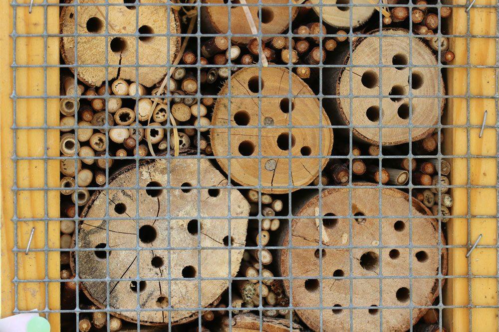 Bienenhotels sollten an warmen und windstillen Plätzen aufgestellt werden.
