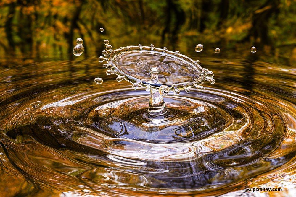 Teichwasser