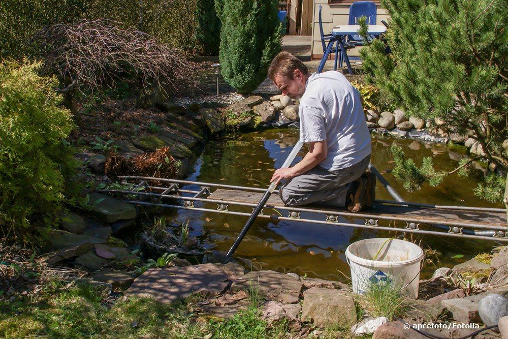 Gartenteich säubern