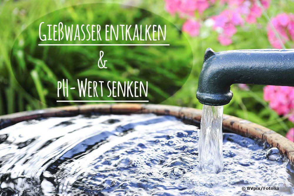 Gießwasser entkalken