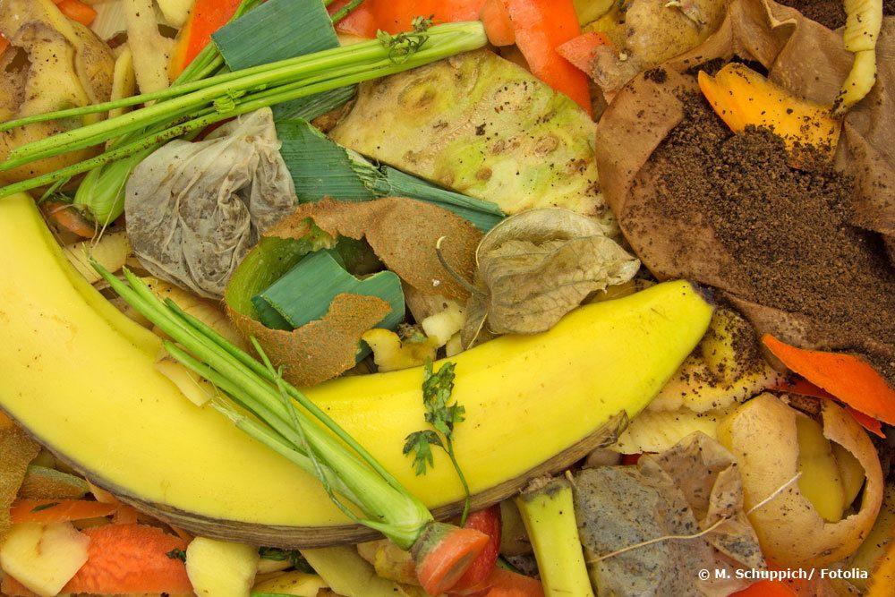 für den Kompost geeignete Materialien