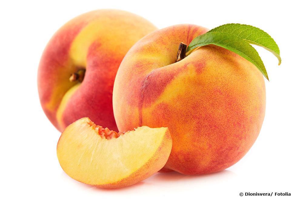Pfirsich, Prunus persica