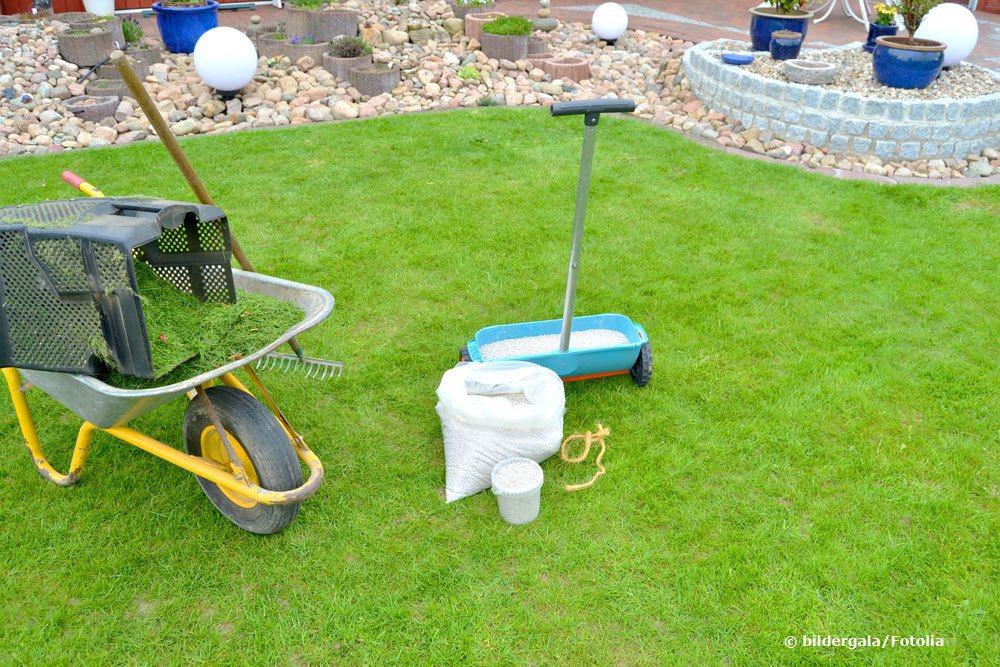 Rasen düngen mit einem Streugerät