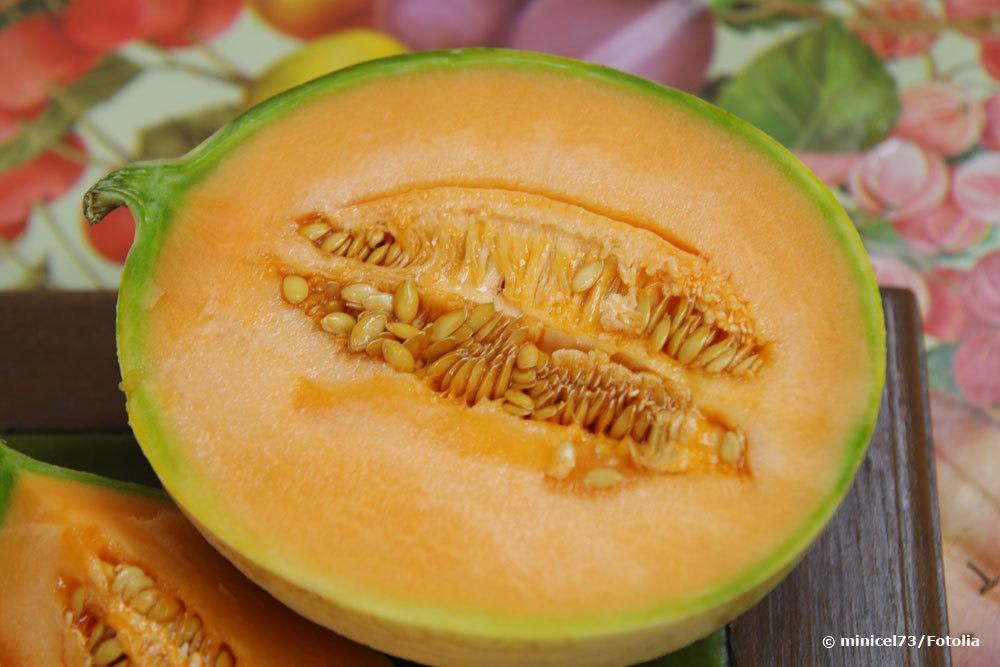 Zuckermelone 'Cantaloupe'