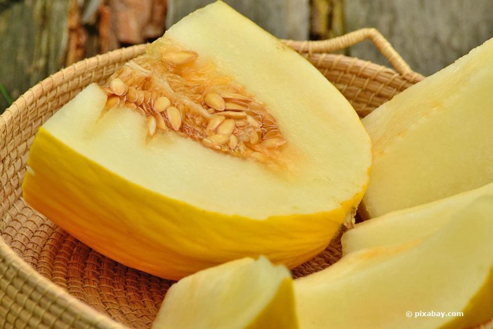 melonen anbauen so gelingt es zuckermelonen selber ziehen. Black Bedroom Furniture Sets. Home Design Ideas