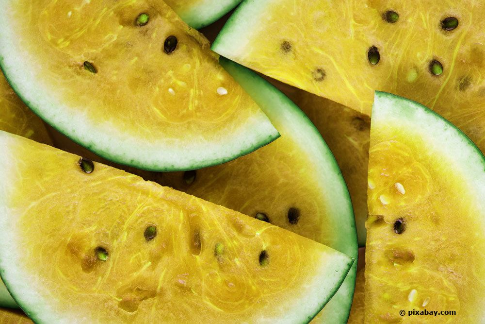 Wassermelone 'Janosik'