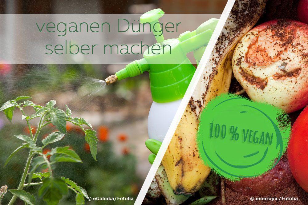 veganen Dünger selber machen