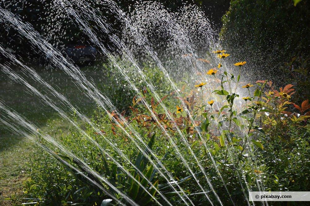 Sprühbewässerung