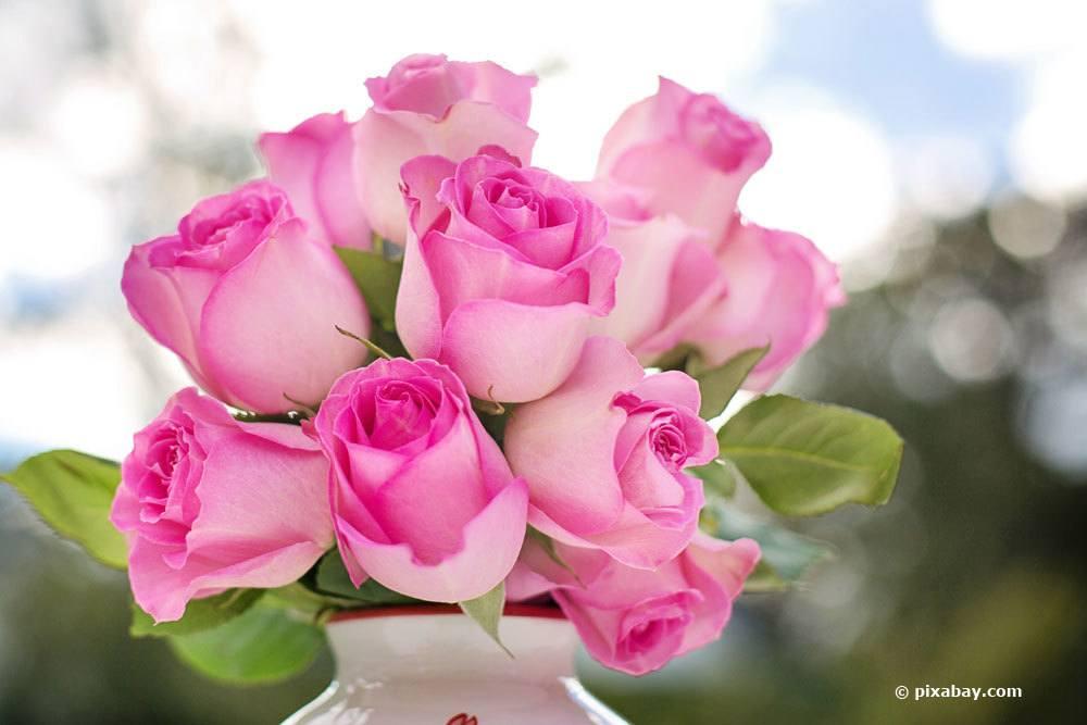 Rosenstrauß in der Vase