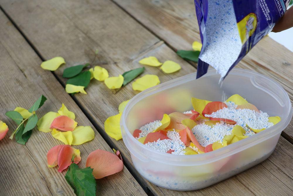 Rosenblüten mit Waschmittel trocknen