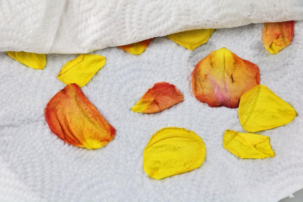 getrocknete Rosenblätter