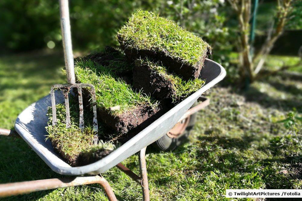 Grassoden in der Schubkarre