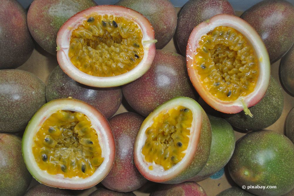 Passionsfrucht, Passiflora edulis forma edulis