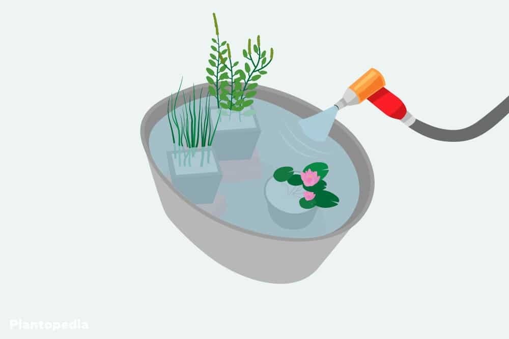 Miniteich komplett mit Wasser befüllen