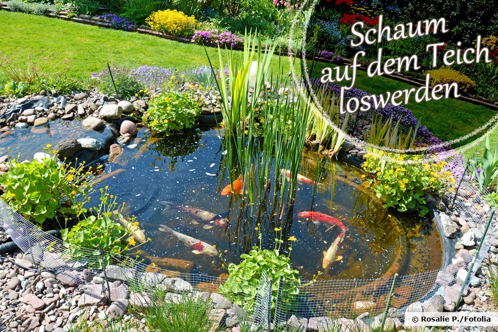 Schaum auf dem Teich loswerden