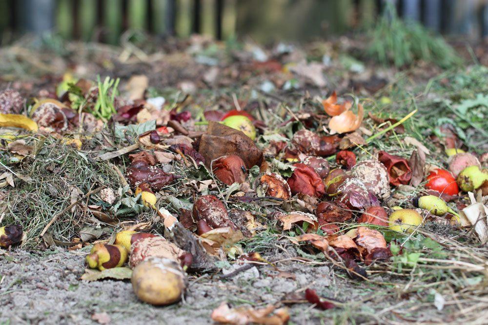 Kompost Materialien