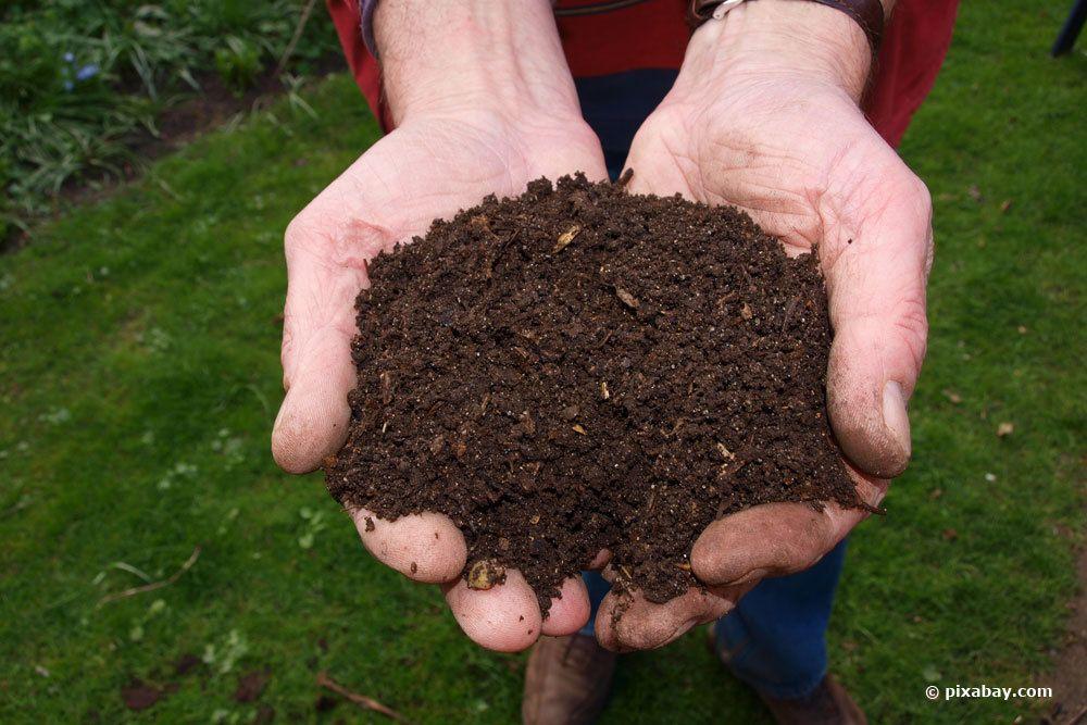 Kompost dämpfen