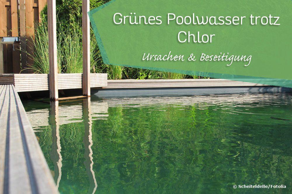 Poolwasser Ist Grün : poolwasser ist gr n trotz chlor was tun pool probleme ~ Watch28wear.com Haus und Dekorationen