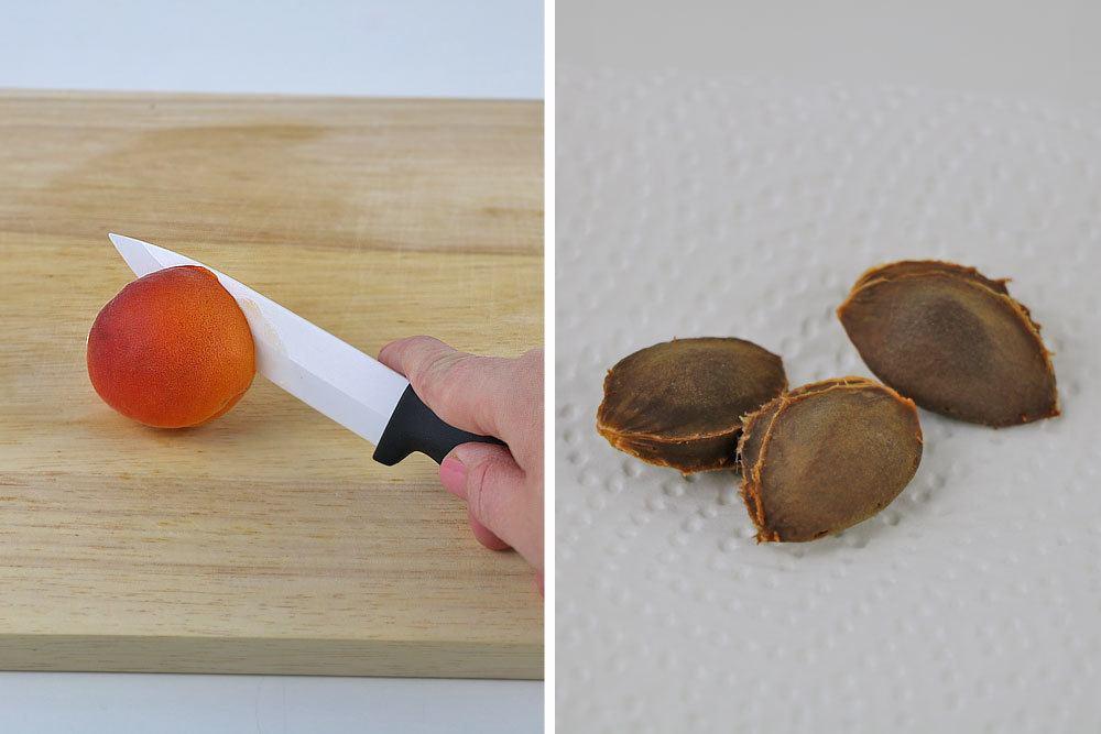Aprikosenkerne säubern