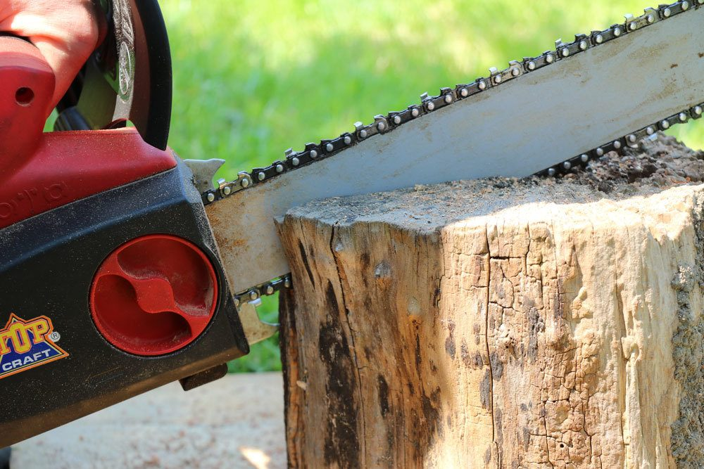 Baumstumpf schachbrettförmig einsägen
