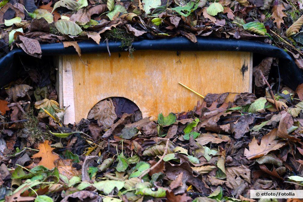 Ein Igelhaus hilft Nützlinge im Garten zu fördern
