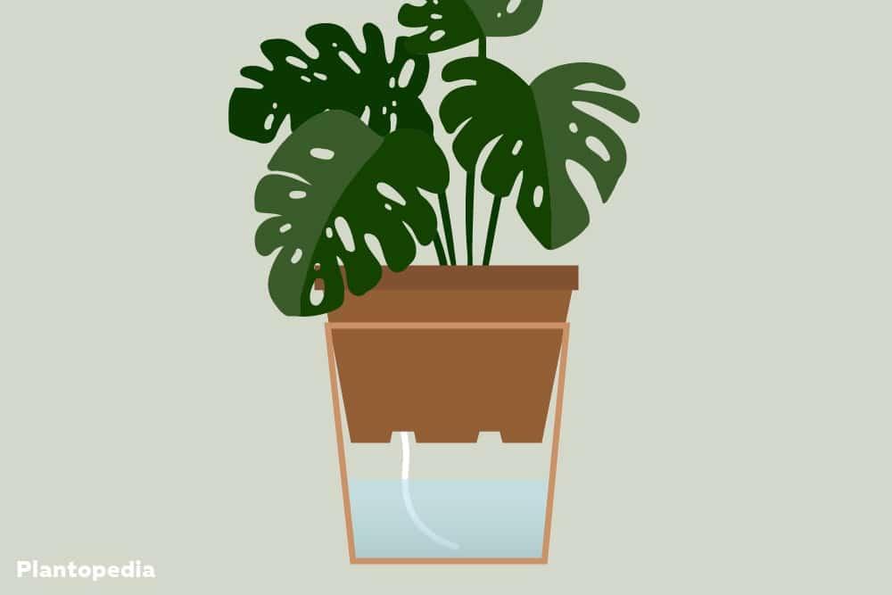 Bewässerungssysteme über einen Docht