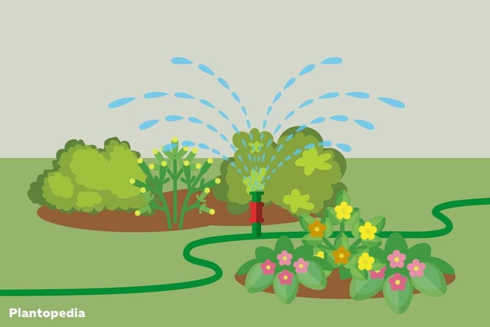 Beregnungsanlagen als Bewässerungssysteme
